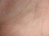 textures-skin-2.bb