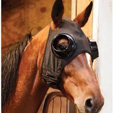 horseblinders